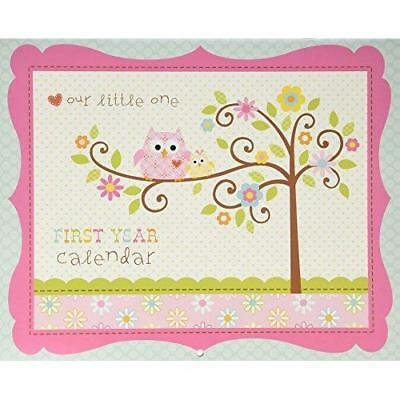 C.R. Gibson Baby's First Year Calendar, By Dena Designs, Stickers Provided, New