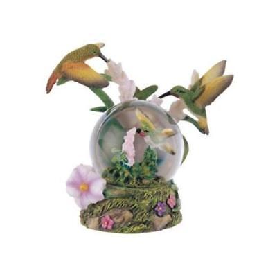 Snow Globe Hummingbird Collection Desk Figurine Decoration New