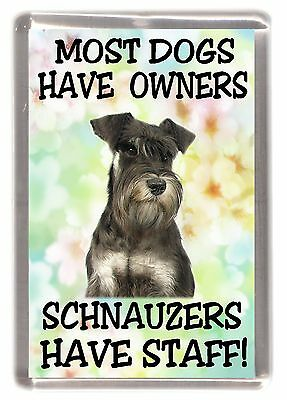 """Miniature Schnauzer Fridge Magnet """"Most Dogs Have Owners Schnauzers Have Staff"""""""
