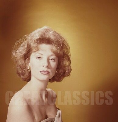 SUZY PARKER GORGEOUS YOUNG 1960s 2 1/4 CAMERA RANSPARENCY PETER BASCH ARCHIVE