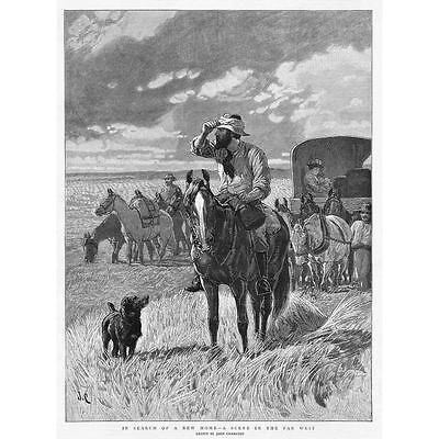 UNITED STATES In Search of a New Home in the Far West - Antique Print 1891