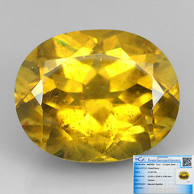 (BGL-CERTIED) 11.62 Ct NATURAL UNHEATED RARE YELLOW APATITE OVAL GEM SEE VDO !!