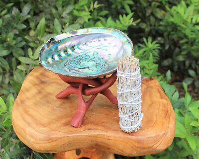 """Abalone Shell, 6"""" Stand, White Sage Smudge Stick & Directions (Smudging Kit)"""
