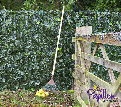 Artificial Ivy Leaf Hedge Screening 1m x 3m Privacy Screen Garden Fence Panels