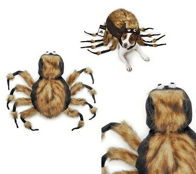Fuzzy Tarantula Spider Dog Costume Dress Your Pup As Your Favorite Arachnid !