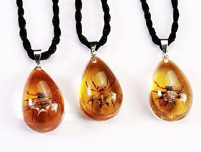12 PCS Fashionable Real unique Spider Teardrop Insect Decoration Pendant NG