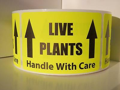 LIVE PLANTS Handle With Care Warning Stickers Labels fluor chartreuse 250/rl