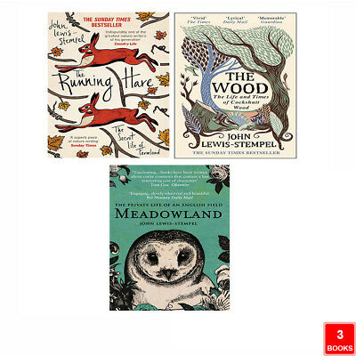 Oxford Reading Tree, Level 10: Fireflies,6 Books Collection Set (Odd Eggs) New
