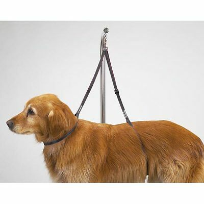 """Top Performance - Nylon Table Harness  - Dog Puppy Grooming Loop - 27"""""""