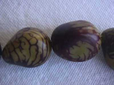 Olive Yellow & Brown Tagua Nut Wood Beads 2pc 35mm