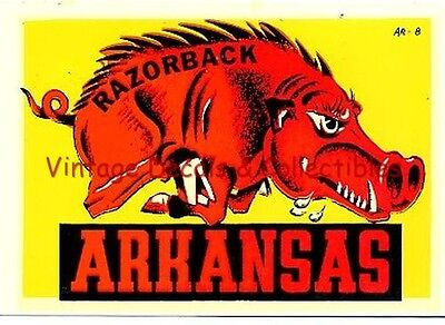 Vintage Arkansas Razorback Souvenir State Travel Water Windshield Luggage Decal