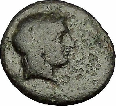 Kolophon in Ionia 360BC Apollo and Horse on Authentic Ancient Greek Coin  i51872