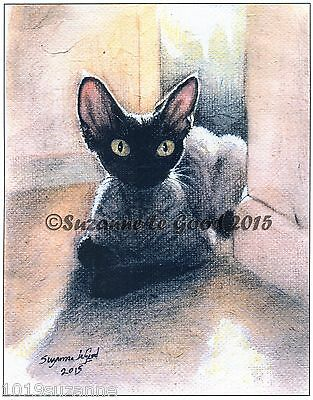 Ltd Edition Black Smoke Devon Rex Print From Original Painting  Suzanne Le Good