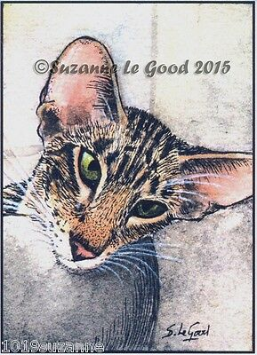 Aceo Ltd Ed Oriental Tabby Cat Print From Original Painting By Suzanne Le Good