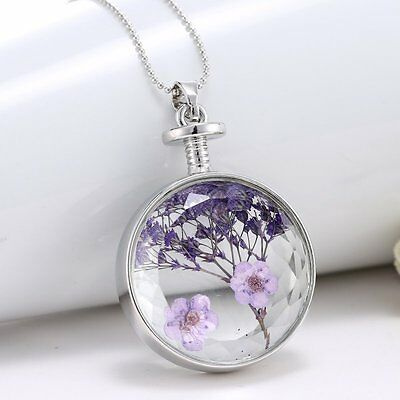 Luxury Purple Dried Real Flower Clear Glass Locket Pendant Necklace Silver Chain