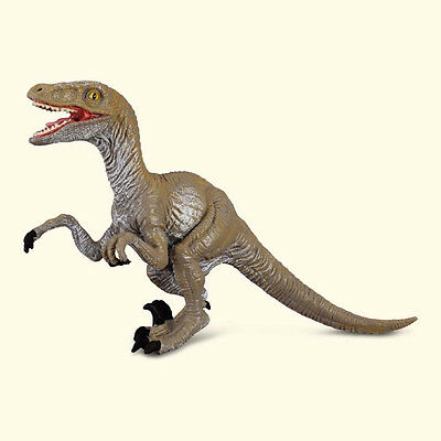 VELOCIRAPTOR DINOSAUR Replica # 88034  Replica  Free Ship/USA w/$25+CollectA
