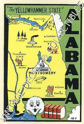 Vintage Alabama Yellow Hammer State Map Souvenir Travel Water Luggage Auto Decal