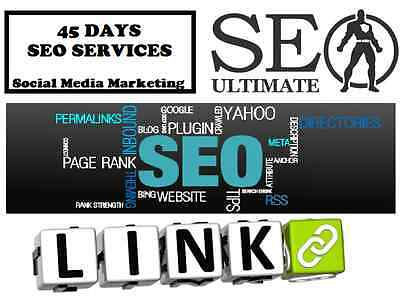 45 DAYS SEO and Rank Among 1st Page of Google with your website  ! SEO