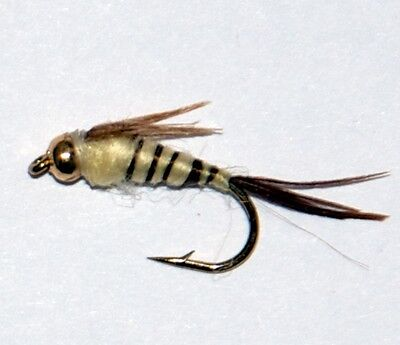 16  GOLD HEAD WALKERS MAYFLY NYMPHS size10-16 Trout Fly Fishing Flies