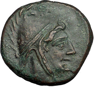 AMISOS in PONTUS MITHRADATES VI the GREAT Time Perseus Pegasus Greek Coin i52545