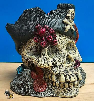 Pirate Skull Coral Rock Ornament Aquarium Fish Tank Bowl Decoration New