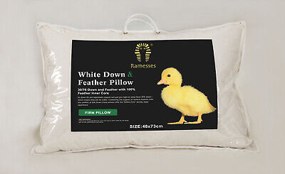 Ramesses Down & Feather Pillow - 30% Down 70% Feather (Fdp)