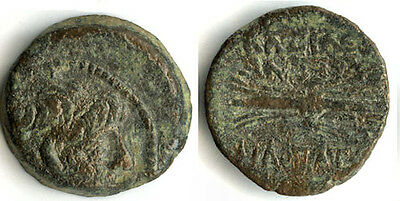 Bronze AE19, Antiochus IX Kyzikenos, 113-95 BC, Seleucid Empire, Ancient Greece