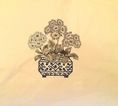 GP&J BAKER Auricula Indigo Floral India Embroidery India Remnant New