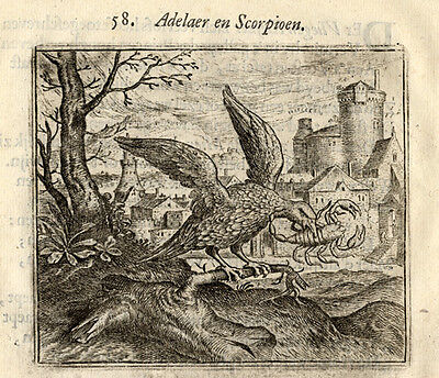 Antique Print-EAGLE-SCORPION-Vondel-Geraerts-1720