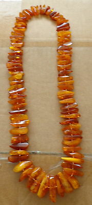 Huge Antique Natural  butterscotch egg yolk Baltic Amber   Beads Necklace    #44