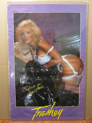 Vintage In Lace poster car garage man cave hot girls Sam Maxwell 1994 1380