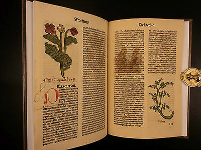 1491 Hortus Sanitatus Incunable 10 WOODCUTS Herbal Garden of Health Incunabula