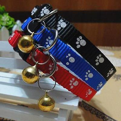 4 Month Dog Anti Fleas Ticks Mosquitoes Remove Collar Pet Nylon Strap 4 Color M