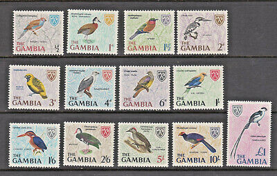 Birds 1966 Complete Set of 13 Diff Mint NH Multicolor Stamp Set Gambia #215-227