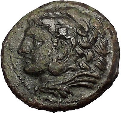 SYRACUSE in SICILY under PYRRHOS 278BC Hercules Athena Ancient Greek Coin i52762