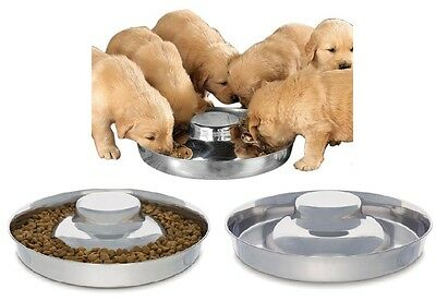 "High Quality Stainless Steel Multi Puppy Litter Feeder Dish Bowl 11"" or 14 1/2"""