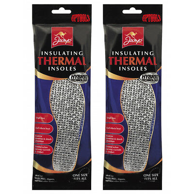 2 Packs x 1 Pair Insulating Foil Thermal Shoe Insoles - One Size Fits All