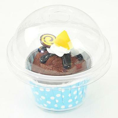 Cup a Cake Clear Pot with Dome Lid Muffin Container CupCake Plastic Carry Box