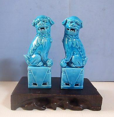Vintage Chinese porcelain turquoise foo dogs one pair on display wood stand 22