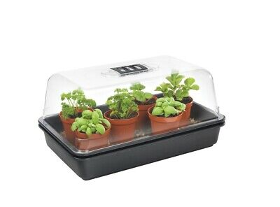 Stewart 38cm Thermostatic Controlled Electric Propagator