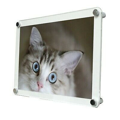 Photo Frame Wall Mount Clear Perspex Poster Picture Display Holder A4 (DSFA4)