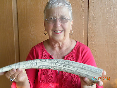 """Scrimshaw Replica Walrus Tusk  the whaler""""CAVALIER"""" 17 inches long around curve"""