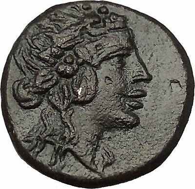 Amisos in Pontus MITHRADATES the GREAT Time Dionysus Cista Greek Coin i53303