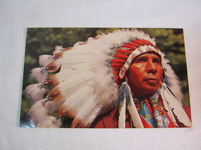 North American Native American Chief  Postcard Vintage Postcard  T*