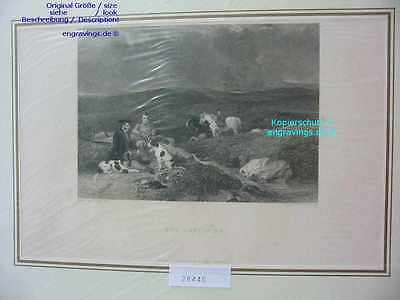 28440-Hunde-Dogs-LUNCHEON-Jagd-Pferde-Hunting-Stahlstich-Steel engraving-1837