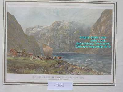 43028-Norwegen-Norway-Norge-SOGNEFJORD-Lithographie-Lithography-1890