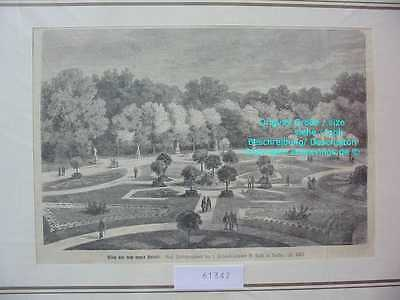 61347-Brandenburg-Sanssouci-Potsdam-TH 1874