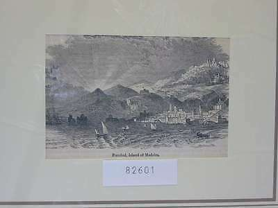 82601-Portugal-Portuguesa-Madeira-Funchal-T Holzstich-Wood engraving