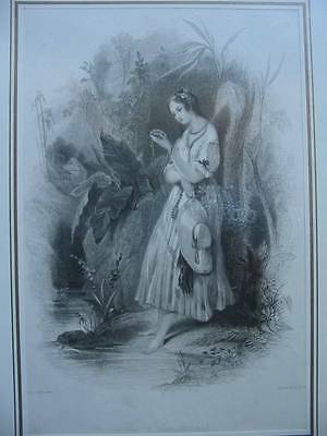 86381-Findens Tableaux-The Buccaneer-Stahlstich-Steel engraving