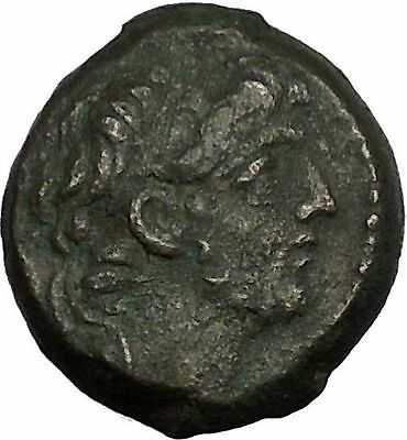 ANTIOCHOS IX Kyzikenos 113BC Seleukid Thunderbolt Ancient Greek Coin i53556
